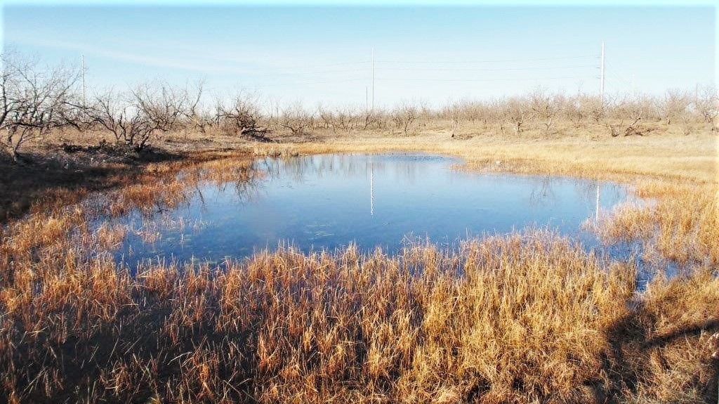 18 acres in Jones County