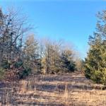 10 acres in Lamar County