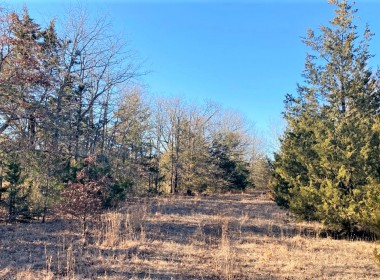 10 acres in Lamar County