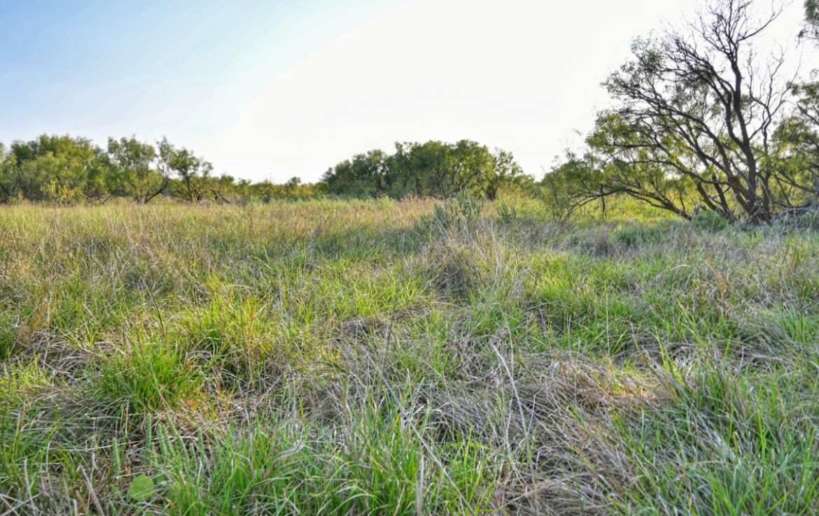 106 acres in Wichita County