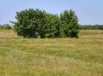 55 acres in Clay County