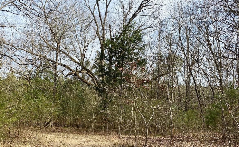 8 acres in Morris County