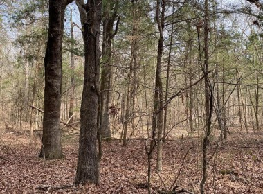 8 acres in Morris County
