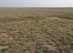 4000 acres in Cochran County