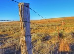 640 acres in Gray County