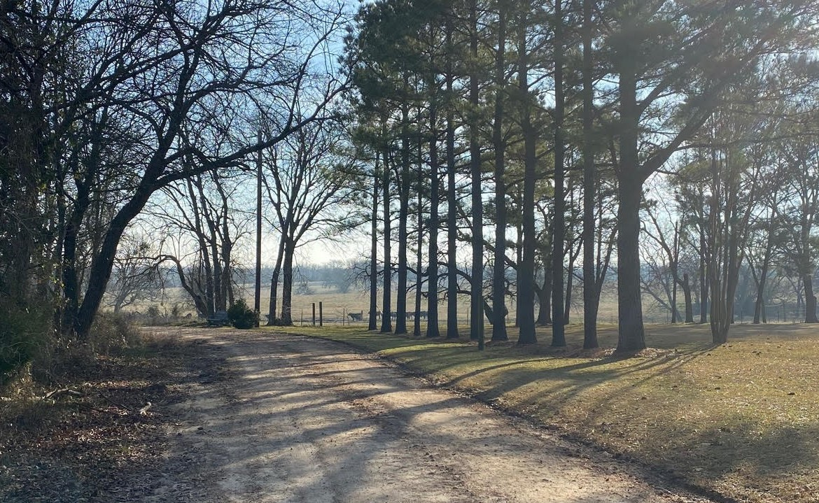5 acres in Hopkins County