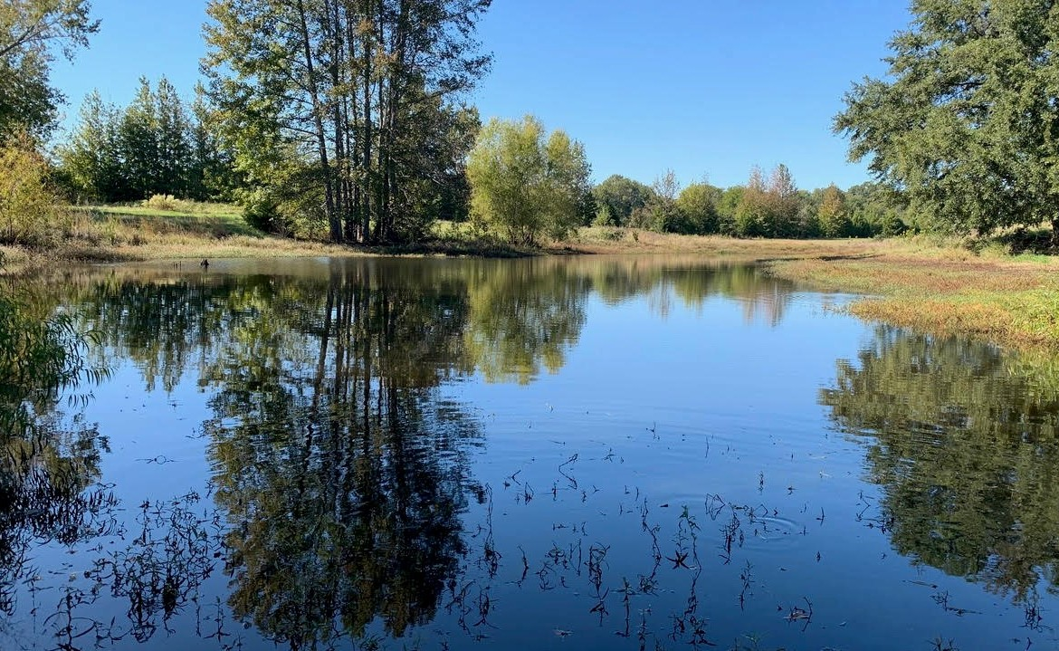 165 acres in Red River County