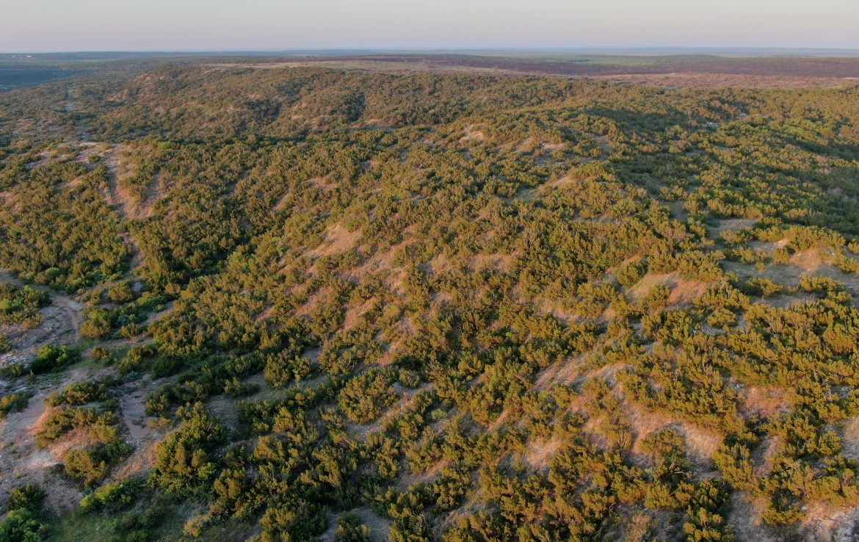 1,172 acres in Foard County