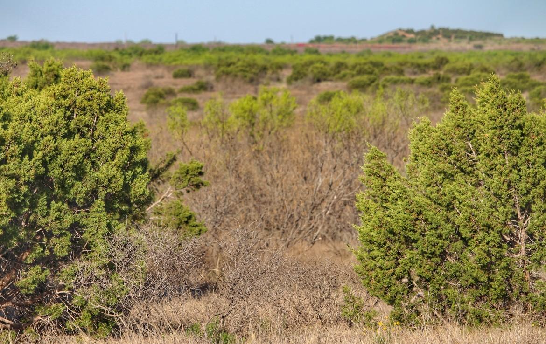 214 acres in Foard County