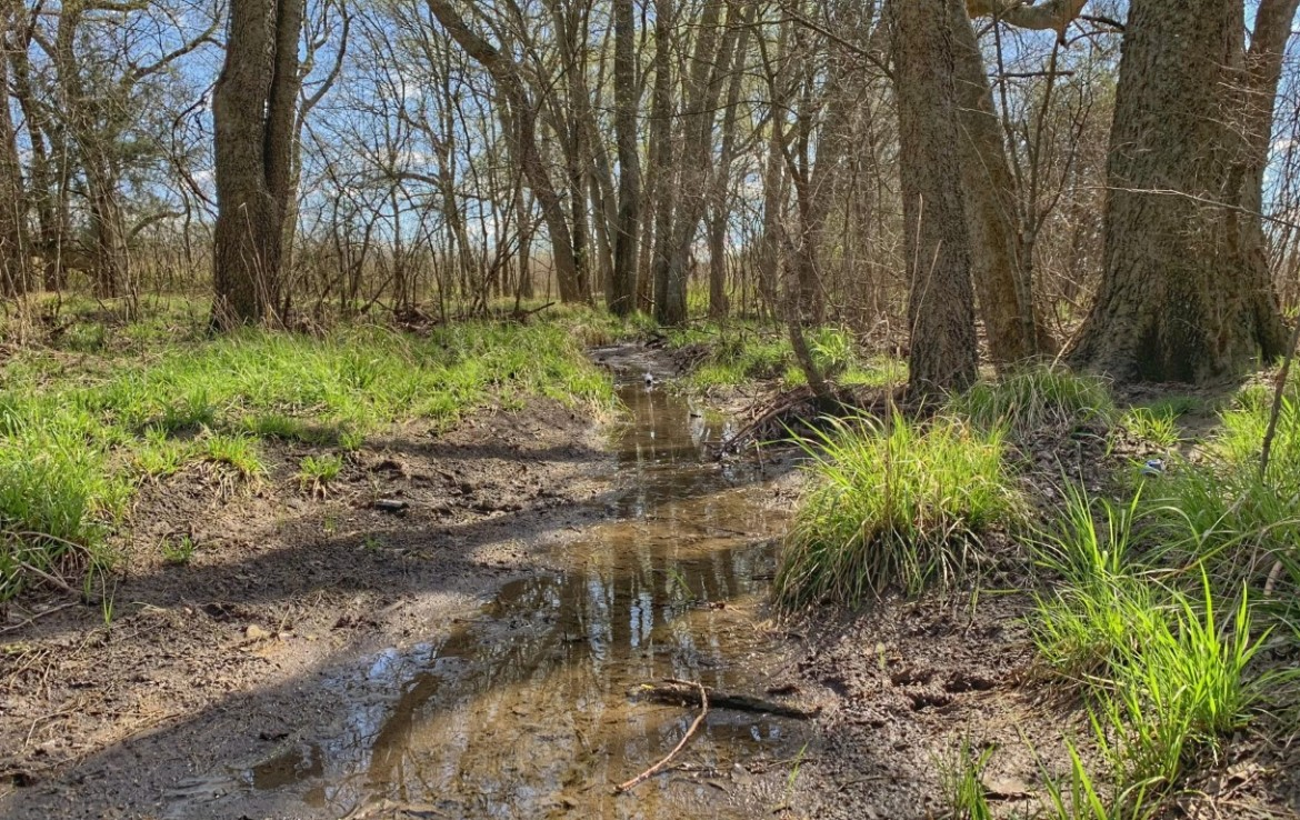 110 acres in Red River County