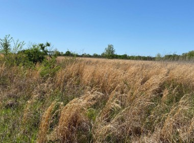 164 acres in Red River County