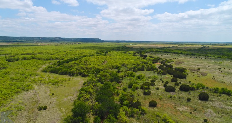 250 acres in Taylor Counyt