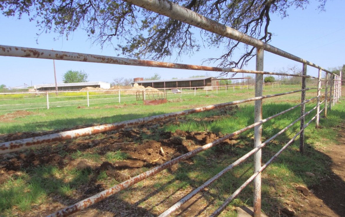485 acres in Young County