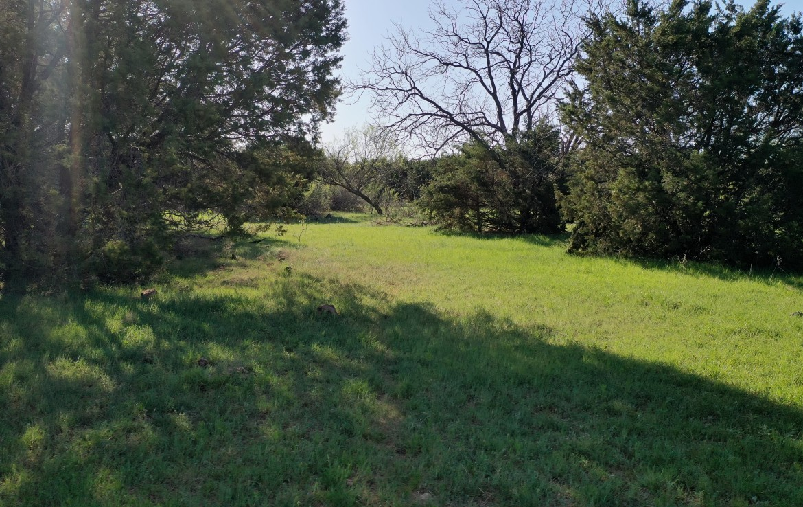 200 acres in Young County