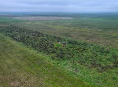 319 acres in Foard County