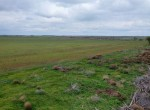399 acres in Foard County
