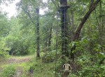 149 acres in Red River County