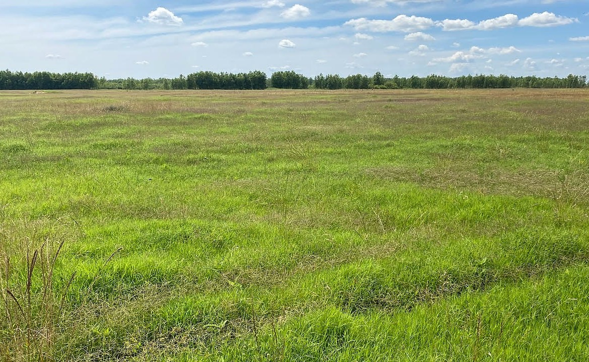 1,000 acres in McCurtain County