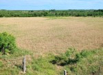 125 acres in King County