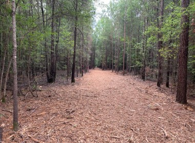 21 acres in Bowie County