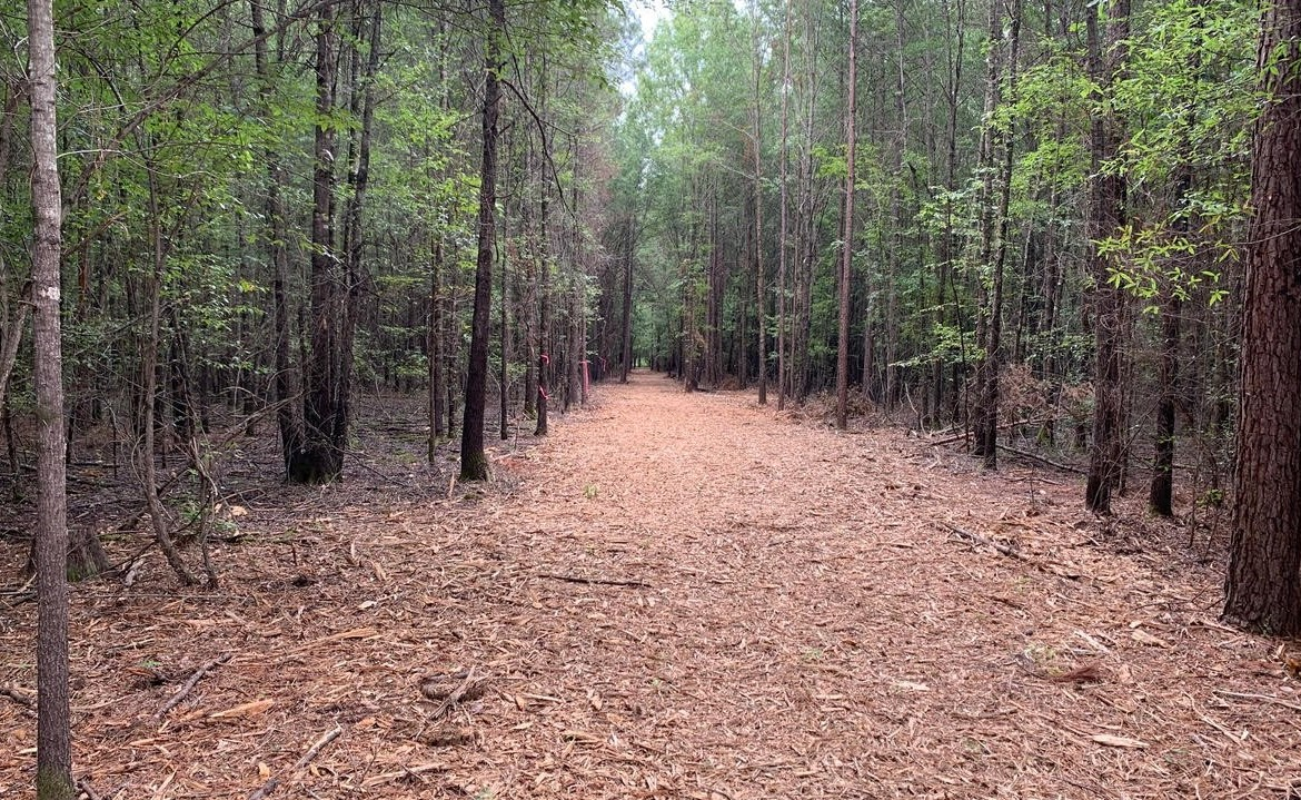 58 acres in Bowie County