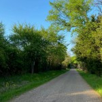 3 acres in Titus County