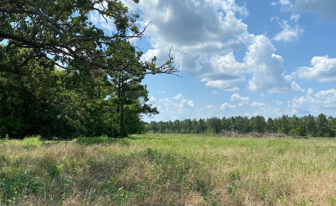 5 acres in Red River County