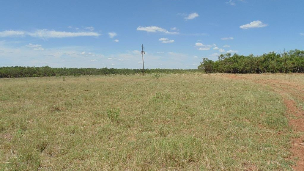 85 acres in Taylor County