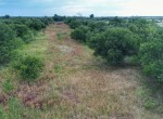 200 acres in King County