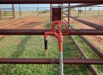 157 acres in Wilbarger County