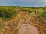 334 acres in King and Cottle County