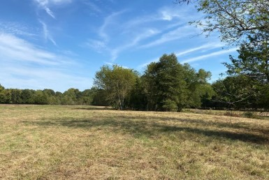 226 acres in Red River County