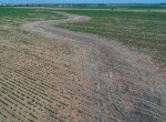 530 acres in Wilbarger County